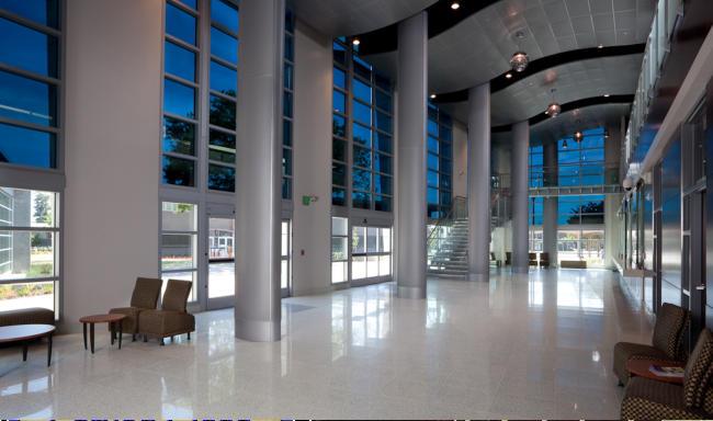 Custom Glass Etching Glass Etching Etched Glass Window Tinting Commercial Window Tinting